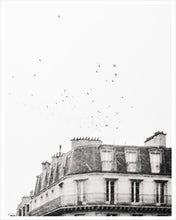 Load image into Gallery viewer, Flight - Paris