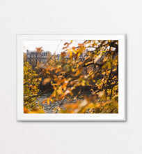 Load image into Gallery viewer, Autumn on the Seine