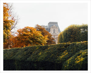 The Louvre in Autumn