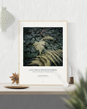 Load image into Gallery viewer, Art Print Poster: Lady Fern & Redwood Sorrel