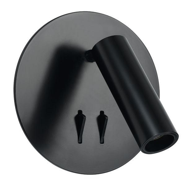Esra Black LED Dual Switch Spot and Wall Lamp