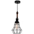 Lathe Industrial Black Cage with Teak Wood Pendant