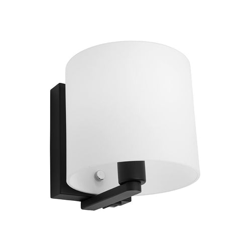 Tida Black and Opal Wall Light