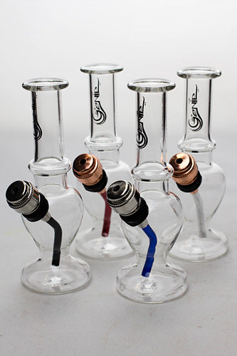 "5"" Genie Miniature glass water bong in a display case - One wholesale Canada"