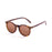 ocean sunglasses KRNglasses model LIZARD SKU 72001.4 with matte black & demy brown frame and revo blue lens