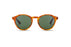 KYPERS sunglasses model MONTY MY001 with havana orange frame and green g15 lens