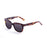 ocean sunglasses KRNglasses model SAN SKU 61000.5 with demy brown frame and smoke lens