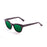 ocean sunglasses KRNglasses model SANTA SKU 62000.96 with ginger transparent frame and smoke lens