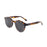 ocean sunglasses KRNglasses model TIBURON SKU 10200.5 with brown strip frame and brown lens