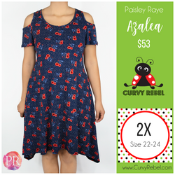Paisley Raye Azalea Dress - Shop this and other amazing styles at www.CurvyRebel.com!