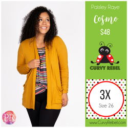 Paisley Raye Cosmo Cardigan - Shop this and other amazing styles at www.CurvyRebel.com!