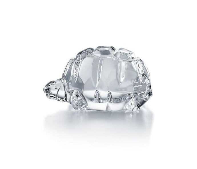 Baccarat Heritage Turtle - Boston