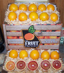 The Fruit Factory Blood Orange Classic Box