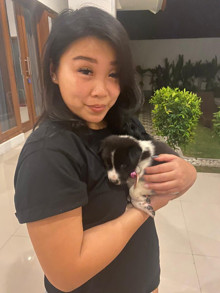Foster Care - Hope For Bali Dogs