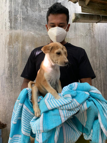 Mission for Dogs In Need III
