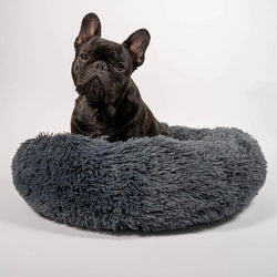 Cuddler Dog Bed - Dark Grey