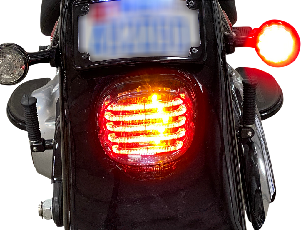 CUSTOM DYNAMICS Taillight/Turn Signal - Red Lens ProBEAM® Integrated Low Profile LED Taillights with Auxiliary Turn Signals - Team Dream Rides