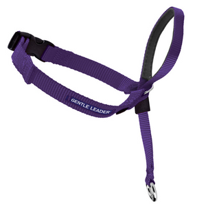 Petsafe Gentle Leader Quick Release Purple Headcollar for Dogs