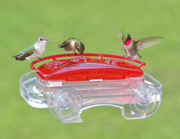 ASPECTS BIRD FEEDER HUMMINGBIRD WINDOW