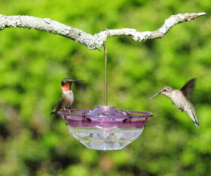 ASPECTS BIRD FEEDER HUMMBLOSSOM PURPLE 04 OZ