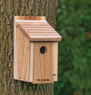 WOODLINK BIRD FEEDER BLUEBIRD HOUSE 1 1/2 INCH HOLE
