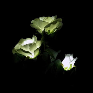 White Rose Solar Night Light
