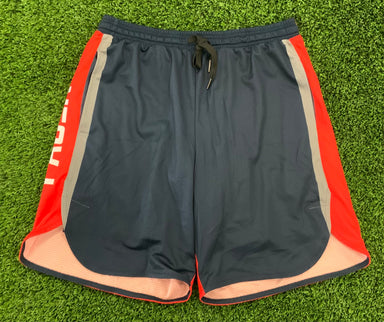 Pauer Navy/Red Pride Sport-Stretch Graphic Short