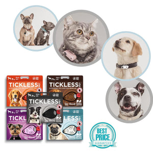 Tickless Chemical-Free Pet Accessories for Flea Prevention and Tick Control for Dogs - FlexTran Animal Care