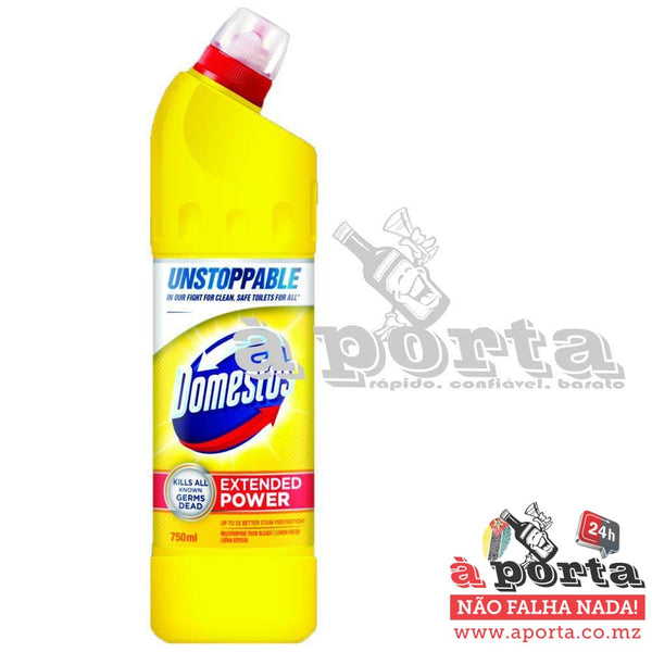 Domestos Summer Fresh 750ml - LIMPEZA