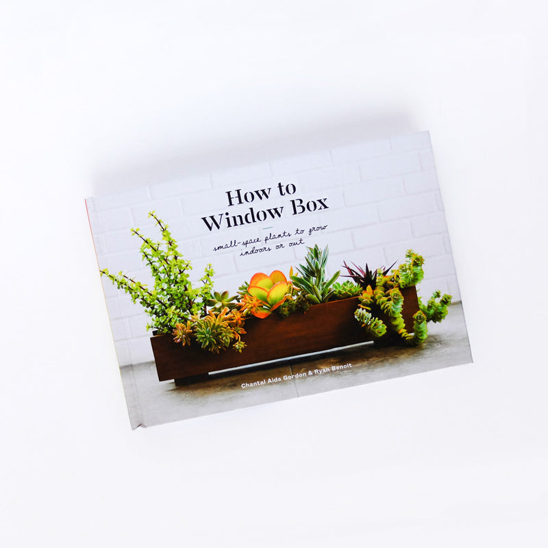 How To Window Box