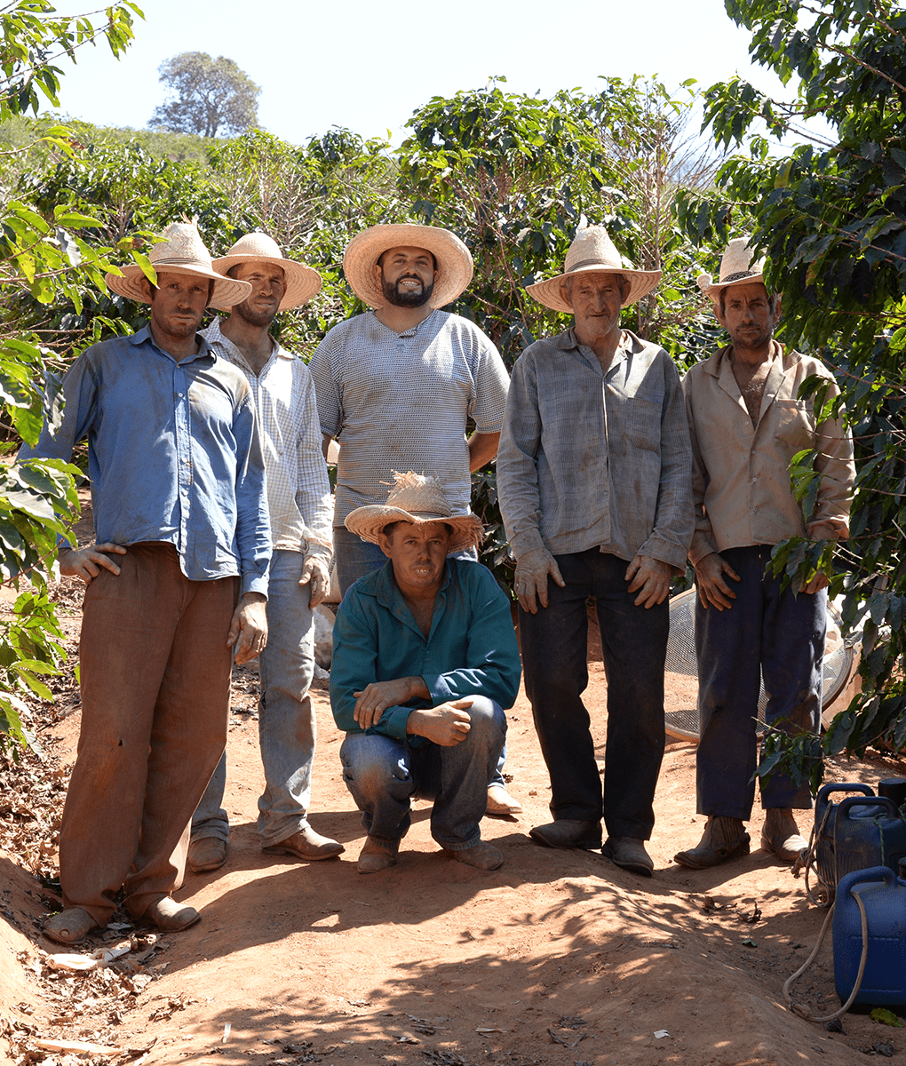 Brazil Coffee Farmers, Union Coffee