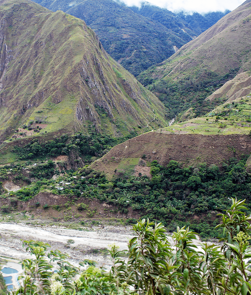 Andes Mountains, Peru, Union Coffee