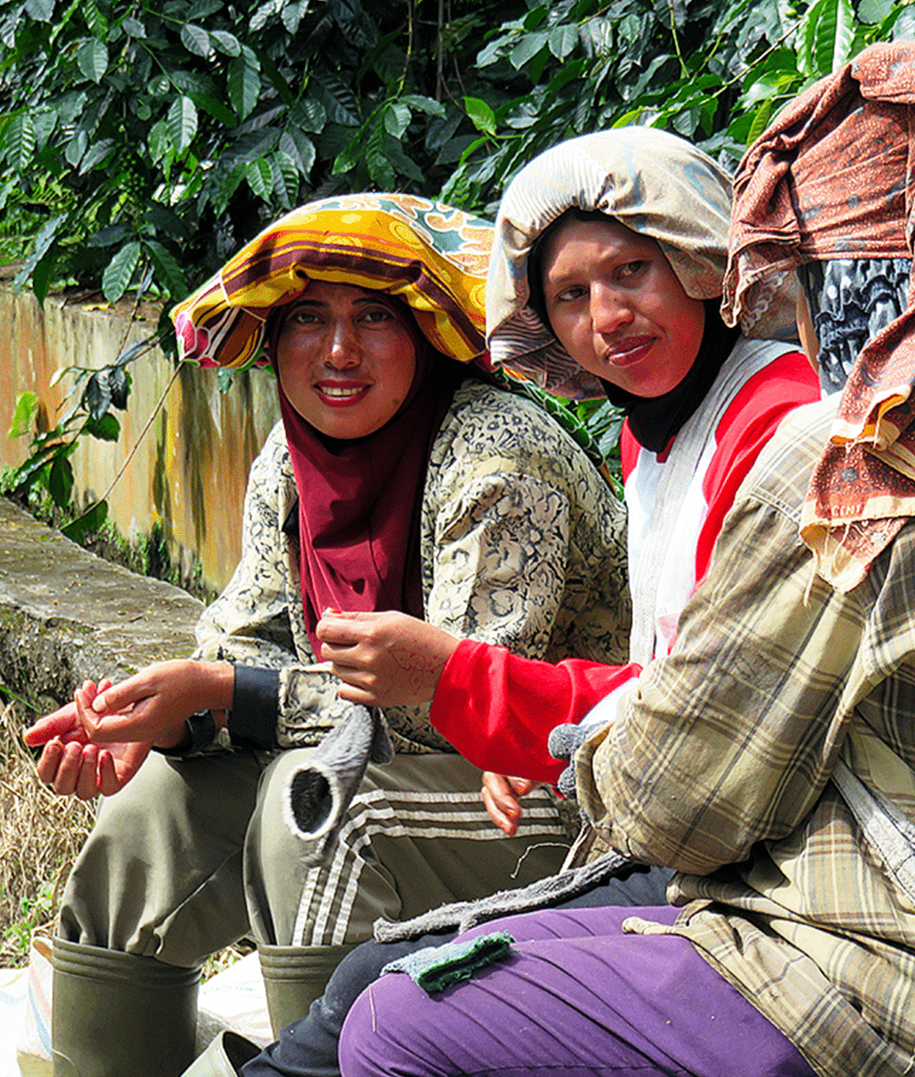 Female coffee workers in Indonesia, Union Coffee
