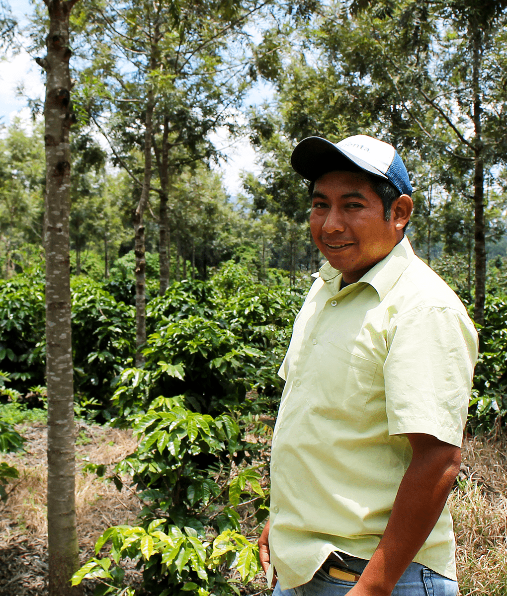Coffee Farmer, Guatemala, Union Coffee
