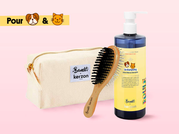 Shampoing + Brosse + Trousse