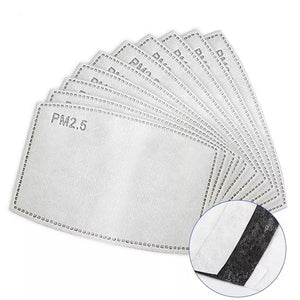 PM 2.5 Filter for Replacement - DuaMask