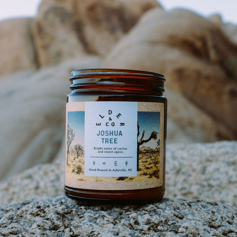 joshua tree soy candle