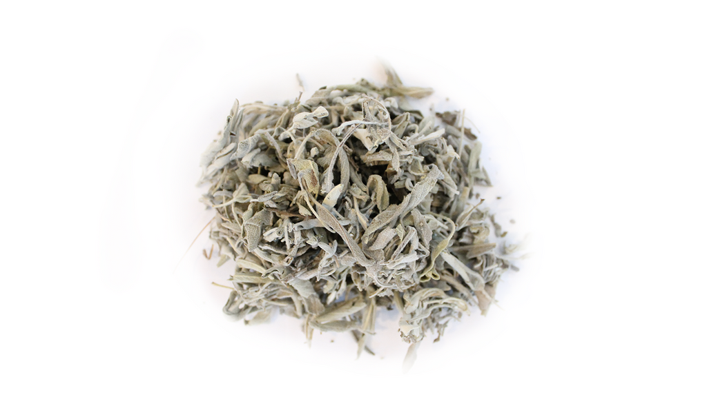 Sauge Officinale Bio de France
