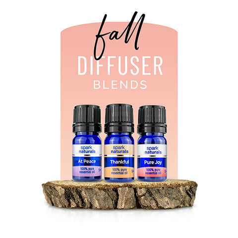 Fall Diffuser Blend 3 Pack