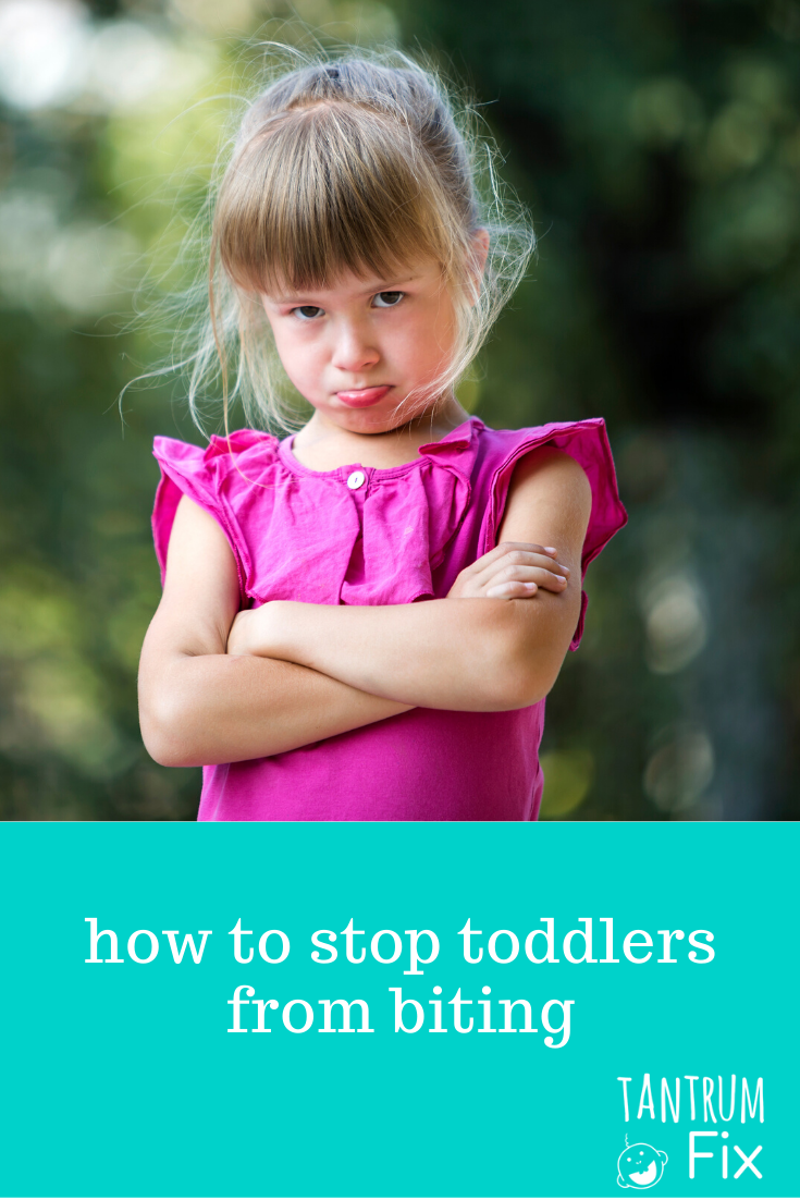how to stop toddler biting