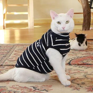 Monty Cat Sweater - Navy - Critters Outfitters