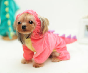 Dino Dog Hoodie Pink Costume - Critters Outfitters