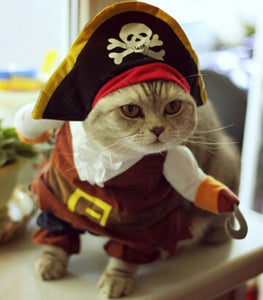 Pirate Cat Costume - Critters Outfitters
