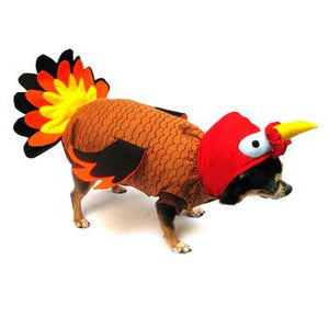 Turkey Dog Costume - Critters Outfitters