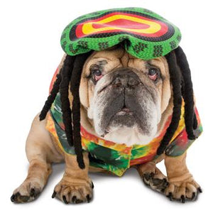 Zelda 70's Rasta Halloween Dog Costume - Critters Outfitters