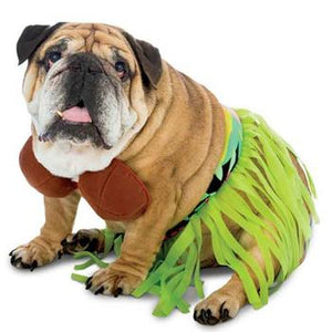 Zelda Hula Dog Costume - Critters Outfitters