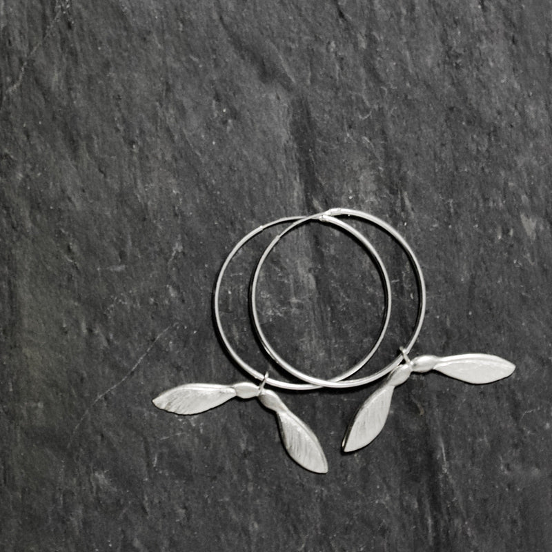 Sycamore Hoop Earrings