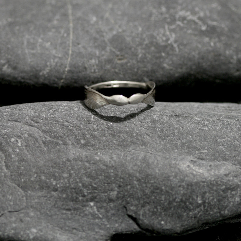Sycamore Ring