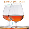 Brandy Snifter Set of 2 Brandy Glasses with Glass Lids in a Gift Tube