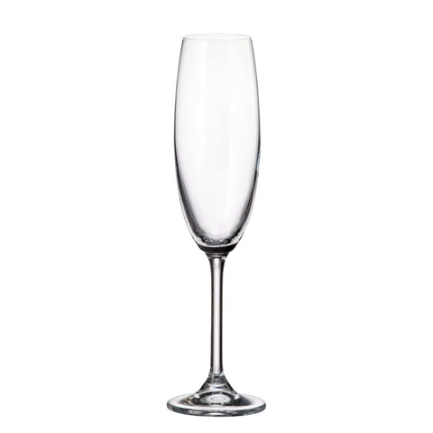 Image of Gastro Champagne Flutes,  Set of 6, 7.5 Ounces